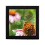 Echinacea del verano caja de joyas