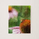 Echinacea del verano rompecabeza con fotos