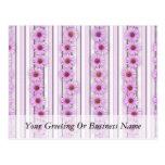 Echinacea Flower Stripes Post Card