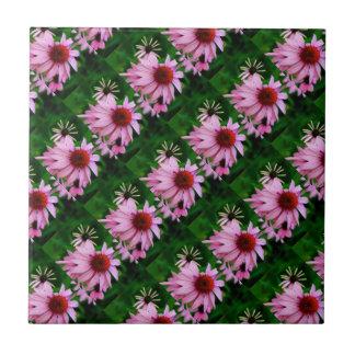 echinacea flowers on green tile