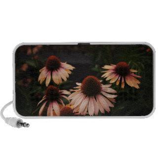 Echinacea 'Mama Mia' High Line Flowers iPhone Speaker