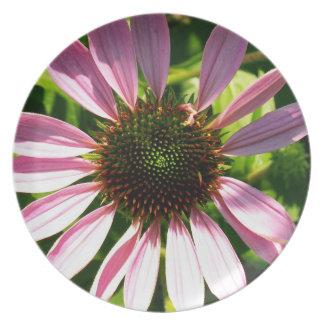 Echinacea Melamine Plate