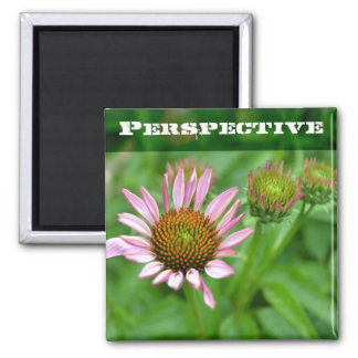 Echinacea Perspective Magnet