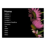 Echinacea purpurea, Chubby Card Business Card Template