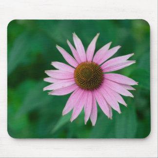 Echinacea purpurea mouse pad
