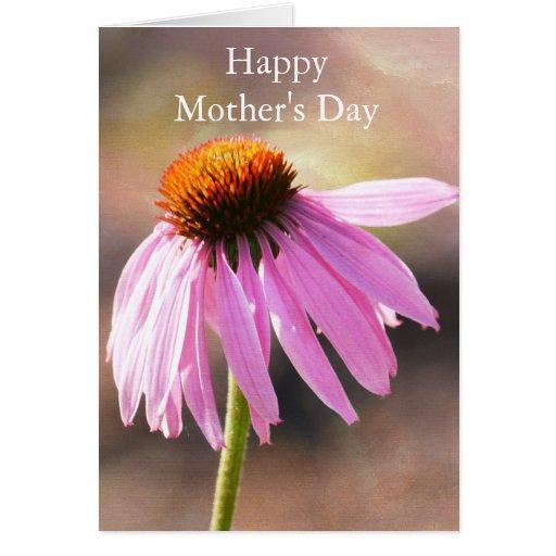 Echinacea rosado tarjeta de felicitación