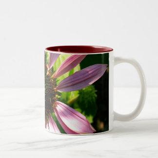 Echinacea Taza De Dos Tonos
