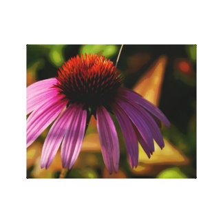 Echinacea ~ Warm Bokeh Wrapped Canvas Print
