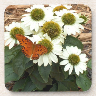 Echinacea White Swan Daisies and Orange Butterfly Drink Coasters