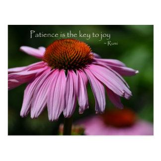 Echinacea with Patience Quote Postcard