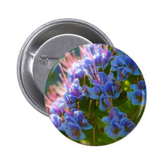Echium Candicans Pinback Button