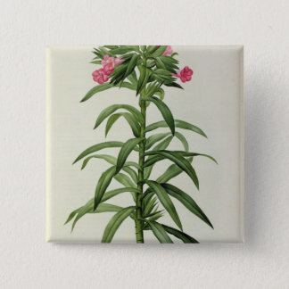 Echium Grandiflorum Pinback Button