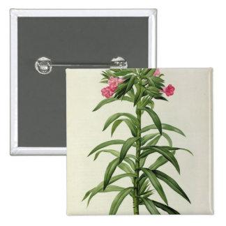 Echium Grandiflorum Pinback Button