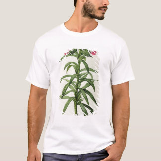 Echium Grandiflorum T-Shirt