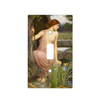 Echo and Narcissus by John William Waterhouse Switch Plate Covers