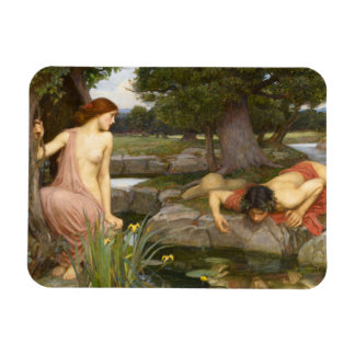 Echo and Narcissus by John William Waterhouse Vinyl Magnets