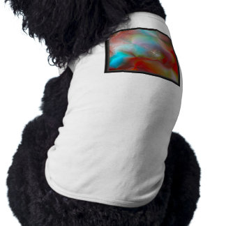 Echo Nebula Pet Clothing