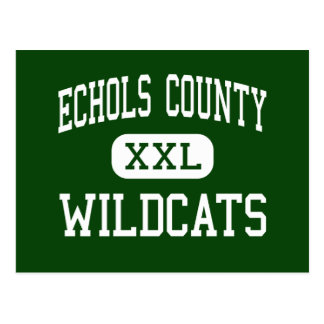 Echols County - Wildcats - High - Statenville Postcard