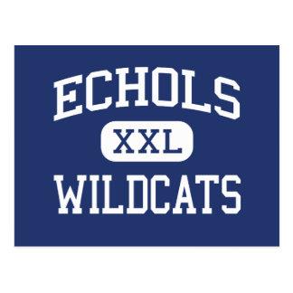 Echols Wildcats Middle Northport Alabama Postcard