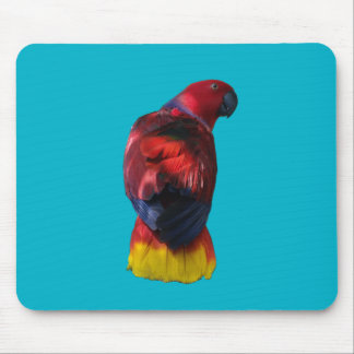 Eclectus Mouse Pad