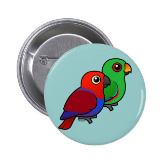 Eclectus Pair Button