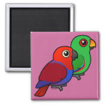 Eclectus Pair Refrigerator Magnets