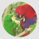 Eclectus Pair Round Stickers