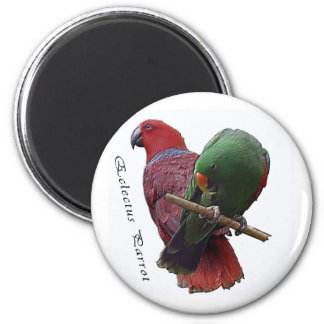 Eclectus Parrot 1 3D 2 Inch Round Magnet