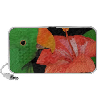 Eclectus Parrot and Hibiscus Flower Speaker System