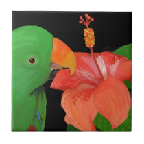 Eclectus Parrot and Hibiscus Flower Tile