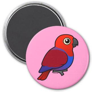 Eclectus Parrot female Magnet
