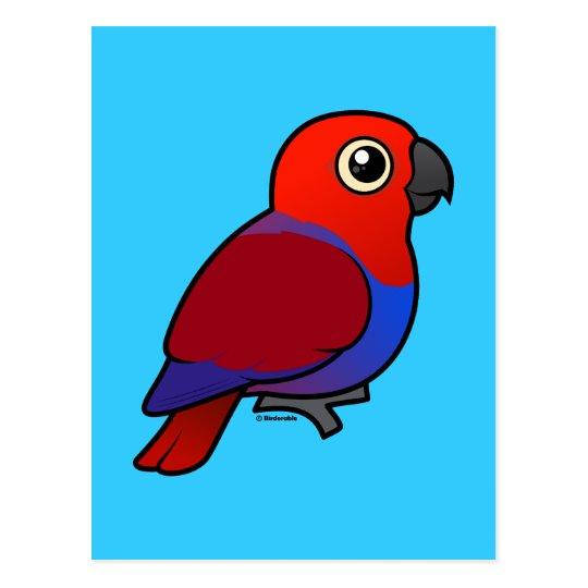 Eclectus Parrot female Postcard