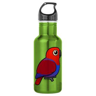 Eclectus Parrot female Water Bottle