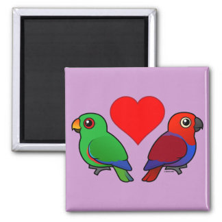 Eclectus Parrot Love 2 Inch Square Magnet