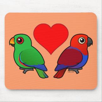 Eclectus Parrot Love Mouse Pad