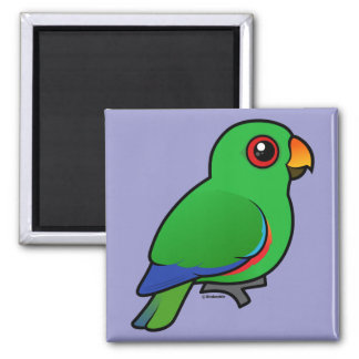 Eclectus Parrot male 2 Inch Square Magnet