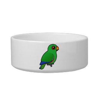 Eclectus Parrot male Bowl