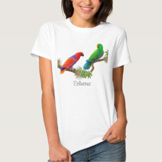 Eclectus Parrots Ladies Baby Doll Shirt