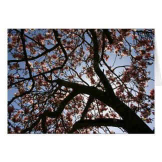 eclipse #1 de la magnolia tarjeta de felicitación