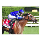 "ECLIPSE AWARD WINNER ""QUESTING"" POSTCARD"
