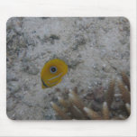 Eclipse Butterfly Fish Mousepads