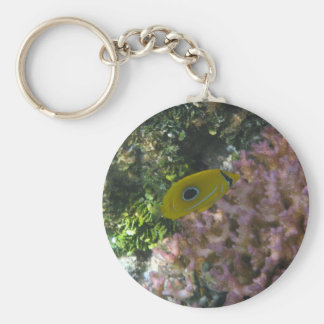 Eclipse Butterfly Fish Swimming By Coral Keychain