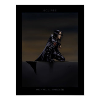 Eclipse Perched Poster