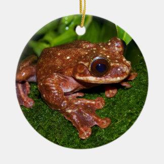 Ecnomiohyla Rabborum Rabbs Fringe Limbed Tree Frog Double-Sided Ceramic Round Christmas Ornament