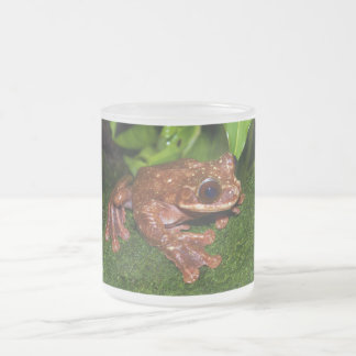 Ecnomiohyla Rabborum Rabbs Fringe Limbed Tree Frog Frosted Glass Coffee Mug