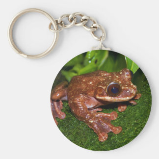 Ecnomiohyla Rabborum Rabbs Fringe Limbed Tree Frog Basic Round Button Keychain