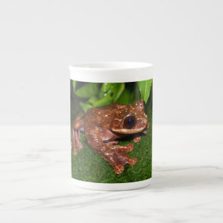 Ecnomiohyla Rabborum Rabbs Fringe Limbed Tree Frog Tea Cup