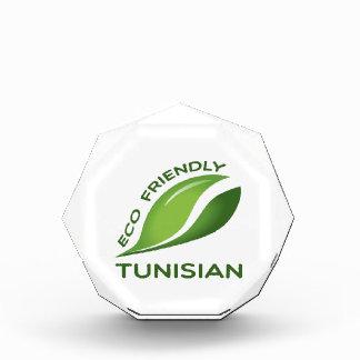 Eco Friendly Tunisian. Acrylic Award