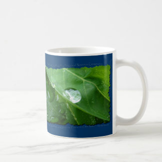 ECO FRIENDLY WATER CONSERVATION Gifts & Gear Coffee Mug