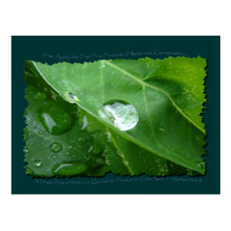 ECO FRIENDLY WATER CONSERVATION Gifts & Gear Postcard